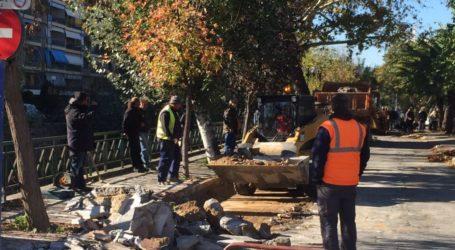 Δημότες του Κραυσίδωνα εναντίον Δήμου Βόλου για την ανάπλαση στην Καραμπατζάκη