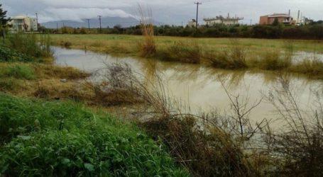 Πλημμύρες και κλειστοί δρόμοι στη Λακωνία