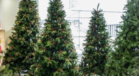 Πρόγραμμα ανακύκλωσης χριστουγεννιάτικων δέντρων από το δήμο