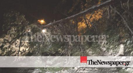 Πτώση δέντρου στο Πήλιο απέκλεισε την πρόσβαση στον Βόλο