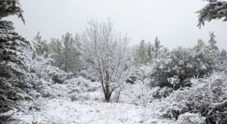 Ζευγάρι εγκλωβίστηκε λόγω χιονιά στο Ρετζίκι Θεσσαλονίκης