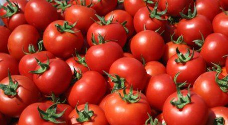 Δέσμευση 810 κιλών ντομάτας σε επιχείρηση στου Ρέντη