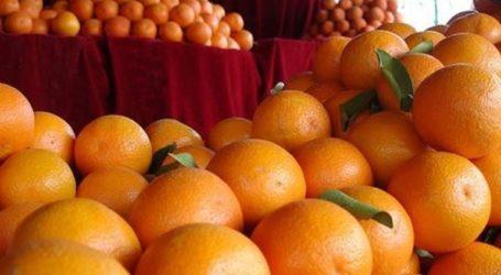 Δεσμεύτηκαν 1,6 τόνοι φρούτων σε επιχείρηση του Πειραιά