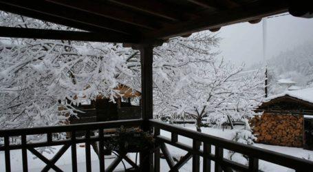 Έντονη χιονόπτωση στα ορεινά του νομού Τρικάλων