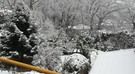 Σαν παραμύθι: Δείτε φωτογραφίες από το χιονισμένο Μεταξοχώρι στην Αγιά