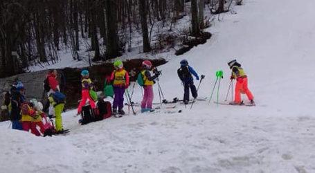 Δωρεάν εκμάθηση σκι για μαθητές της Μαγνησίας μέσω του προγράμματος «Χιονονιφάδα»