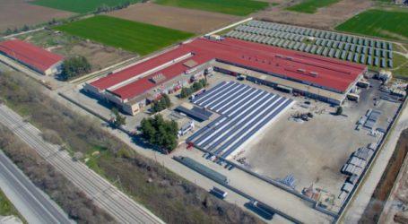 Νέα παραγωγική γραμμή στην EXALCO – Με πάνω από 100 άτομα είναι ο μεγαλύτερος εργοδότης στη Λάρισα