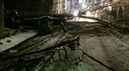 Έπεσε δέντρο από το χιόνι σε πολυσύχναστο δρόμο των Φαρσάλων – Άγιο είχαν οι περαστικοί (φωτο)