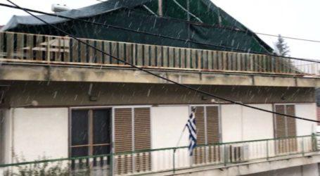 Άρχισε να χιονίζει στη Λάρισα το πρωί της Πέμπτης (video)