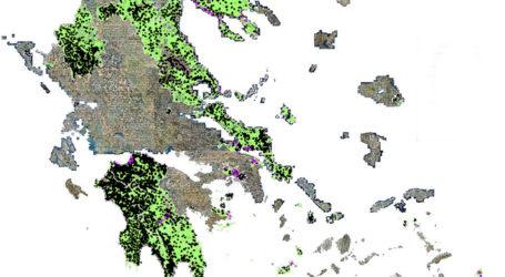 Αρχές Μαρτίου αναρτώνται οι δασικοί χάρτες σε Βόλο, Ν. Αγχίαλο, Αλόννησο και Σκιάθο