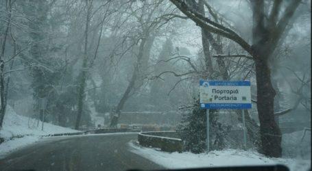 Σε λευκό κλοιό ο Βόλος – Χιόνισε και στην Γορίτσα!