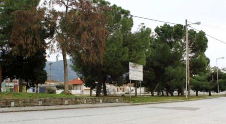 Ο Εξωραϊστικός Σύλλογος Τσαριτσάνης για την αυθαίρετη σιδεροκατασκευή στην κάτω πλατεία