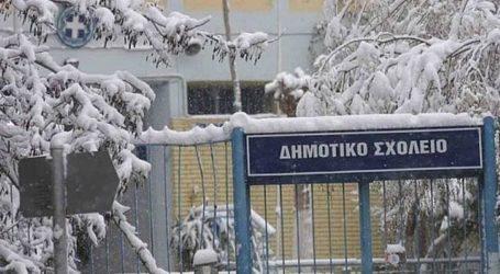 Κλειστά αύριο τα σχολεία στον Δήμο Ζαγοράς – Μουρεσίου