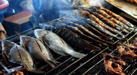 Το φρέσκο ψάρι δεν έχει μέρα στη Λεύκα του Μανώλη