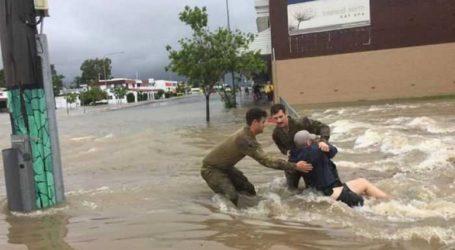Από τις εκτεταμένες πλημμύρες βρέθηκαν κροκόδειλοι σε κατοικημένες περιοχές!