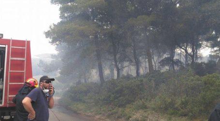 Φωτιά σε εξέλιξη κοντά στη λίμνη Καϊάφα