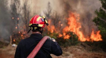 Άμεσες δράσεις εν όψει της αντιπυρικής περιόδου εξετάζει η ανεξάρτητη επιτροπή για τη διαχείριση πυρκαγιών