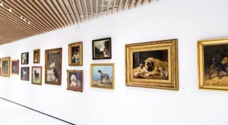 Ένα νέο μουσείο αφιερωμένο στους σκύλους