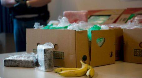 Δίκη για τα «κιβώτια μπανάνας» με κοκαΐνη στη Γερμανία