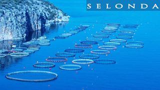 Εγκρίνεται, υπό όρους, η εξαγορά των Νηρέα και Σελόντα
