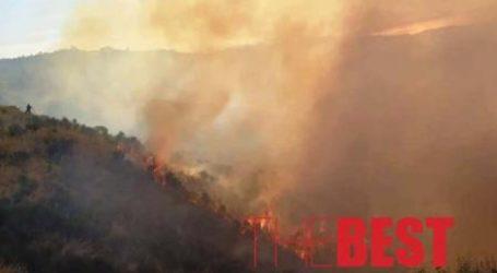 Τραυματίες δύο πυροσβέστες που έδιναν «μάχη» με τις φλόγες στα Συχαινά