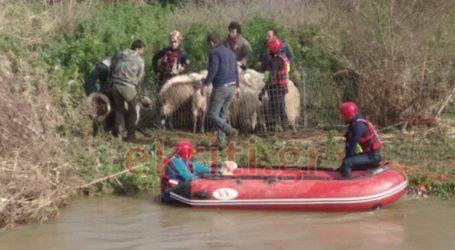 Καρέ-καρέ επιχείρηση της 3ης ΕΜΑΚ για εγκλωβισμένα ζώα