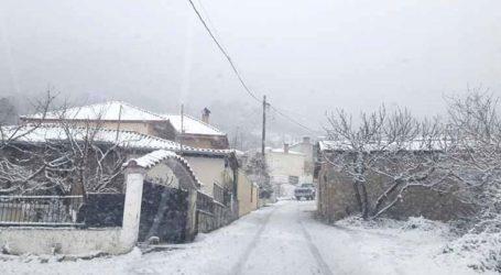 Έντονη χιονόπτωση στη δυτική Θεσσαλία