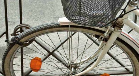 7 χρόνια σε Γεωργιανό για κλοπή ποδηλάτου