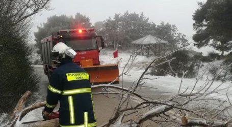 Ξεπέρασαν τις 250 οι κλήσεις στην πυροσβεστική για βοήθεια