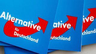Συμμαχία σε ευρωπαϊκό επίπεδο αναζητά σε Αυστρία και Ουγγαρία η «Εναλλακτική για τη Γερμανία»