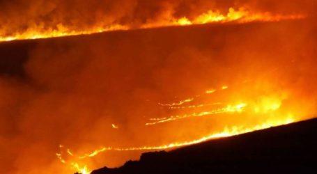 Σειρά από πυρκαγιές στην Βρετανία λόγω του ασυνήθιστα ζεστού καιρού