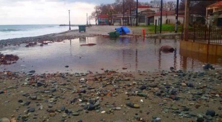 «Ποτάμι» ο παραλιακός δρόμος στο Κόκκινο Νερό – Κόπηκε στα δύο (φωτο)