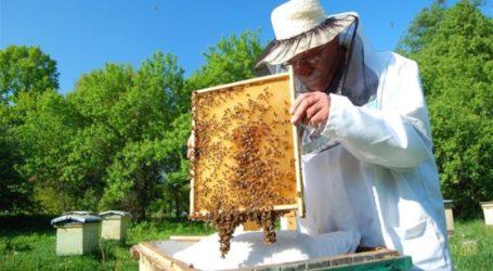 Εσπερίδα – ομιλία και έκτακτη γενική συνέλευση για τον Μελισσοκομικό Σύλλογο Λάρισας