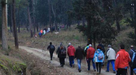 Έκαναν πεζοπορία και έκοψαν πίτα στο δάσος Τσαριτσάνης