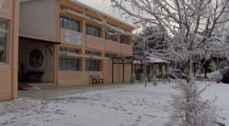 Αυτά τα σχολεία θα είναι κλειστά αύριο στο δήμο Τεμπών