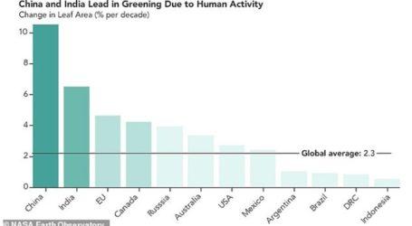 Kίνα και Ινδία δενδροφύτευσαν έκταση όσο το δάσος του Αμαζονίου