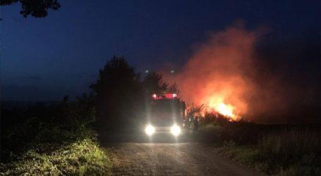 Υπό μερικό έλεγχο η πυρκαγιά στο Αρματωλικό