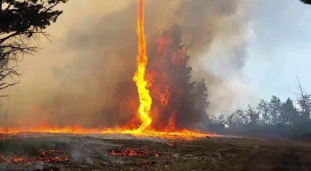 Υπό έλεγχο πυρκαγιά σε δασική έκταση
