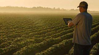Παράταση στον ψηφιακό μετασχηματισμό της γεωργίας ζητούν οι συνεταιρισμοί