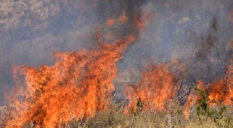 Φωτιά στον Ακροπόταμο Θεσσαλονίκης
