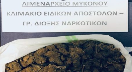 Σύλληψη αλλοδαπού για ναρκωτικά στη Μύκονο