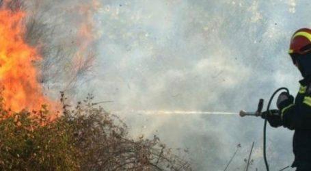 Στάχτη έγιναν οκτώ στρέμματα δασικής-αγροτικής περιοχής στο Οροπέδιο Λασιθίου