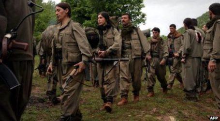 Η Τεχεράνη διαψεύδει ότι μετέχει στην τουρκική επιχείρηση κατά των Κούρδων ανταρτών