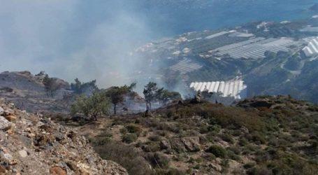 Πυρκαγιά στην Ιεράπετρα. Δυσκολεύουν το έργο της κατάσβεσης οι ισχυροί άνεμοι