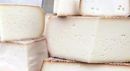 Δεσμεύτηκαν 5,8 τόνοι τυριών σε ψυκτική αποθήκη του Πειραιά