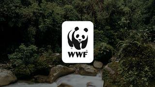 Διαμαρτυρία WWF για πρόγραμμα εξόρυξης υδρογονανθράκων στη θάλασσα της Κρήτης