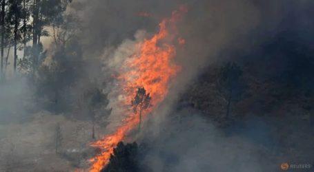 Πυρκαγιές από την ασυνήθιστη ζέστη σε Ισπανία και Πορτογαλία
