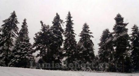 Φρέσκο χιόνι στα ορεινά της Ευρυτανίας και στον Παρνασσό!