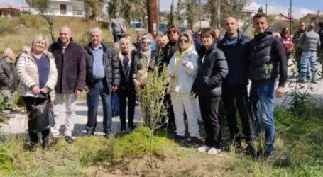 Αναδάσωση από τον σύλλογο «Νέα Γλυκιά Ζωή», την Περιφέρεια Πελοποννήσου και τον Ροταριανό Όμιλο Κορίνθου