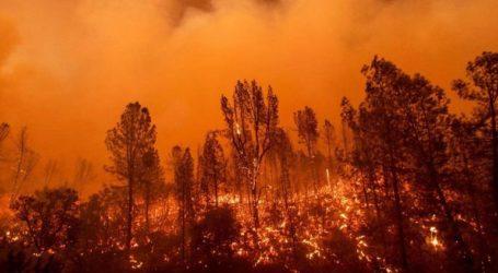 Τουλάχιστον 26 πυροσβέστες νεκροί σε δασική πυρκαγιά
